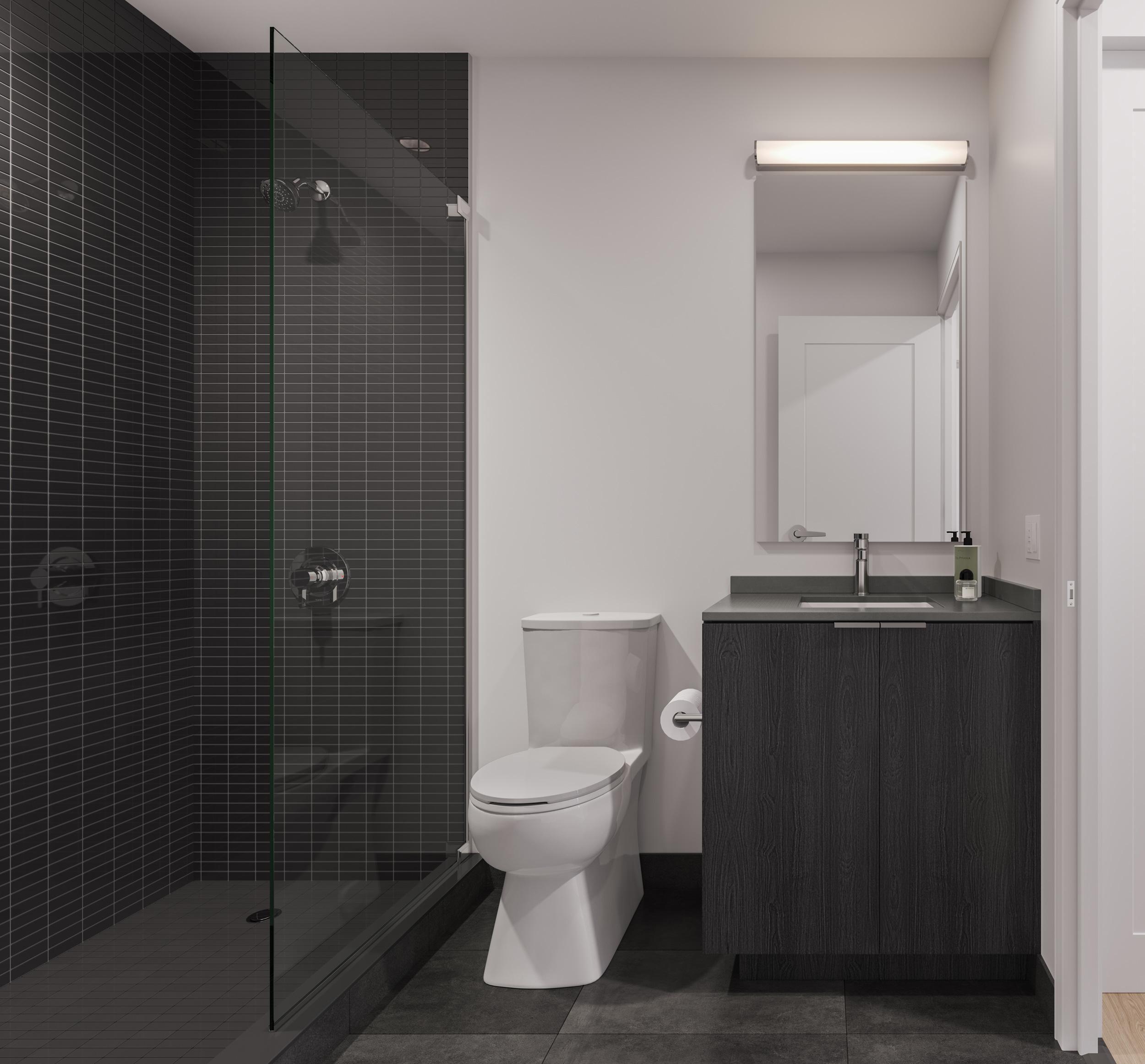 Dark Bathroom Rendering
